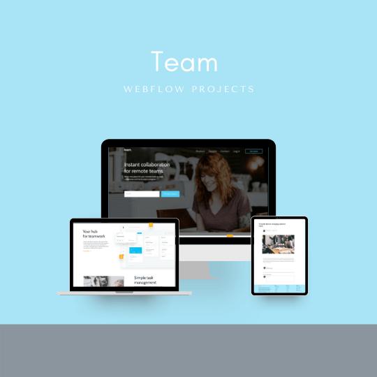 webflow UI design website thewebcode